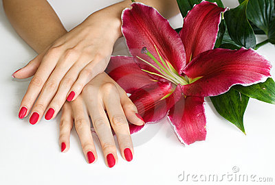 Hands with pink manicure and lily
