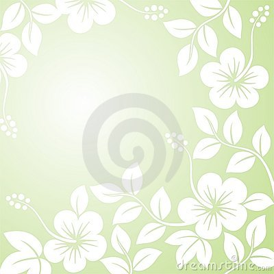 Abstract floral patterns