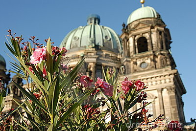 Berlin Cahedral through the flowers