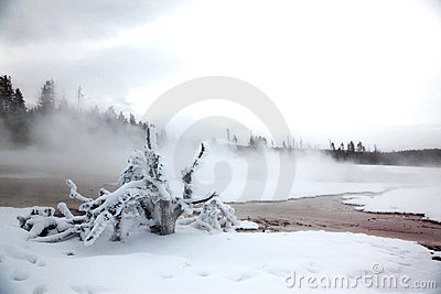 Winter season at lake of Yellowstone NP