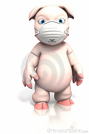 Pig standing with dust mask
