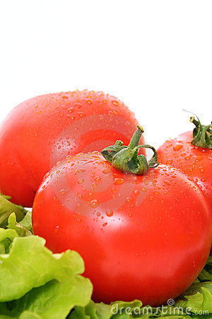 Fresh Red wet Tomatoes
