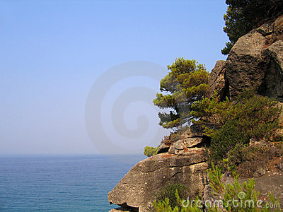 Rocky and wooded shore