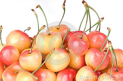 Rainier Cherries Close Up
