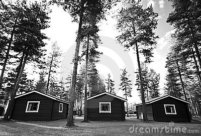 Three cabins in woods
