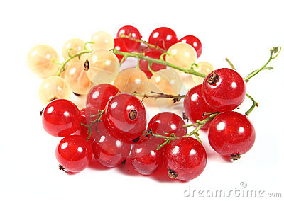 Fresh red and white currants