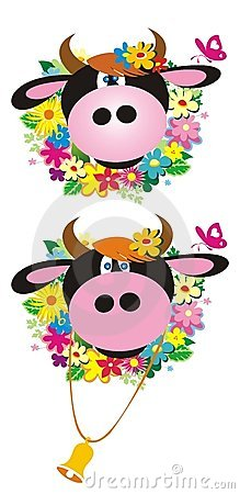 Two cows with flowers and butterfly.