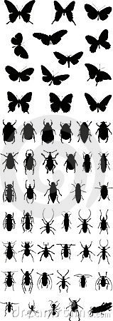 Insects silhouette 1 (+ vector)