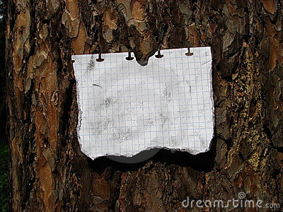 The note attached to a tree