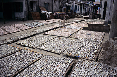 Dried fish, Vietnam