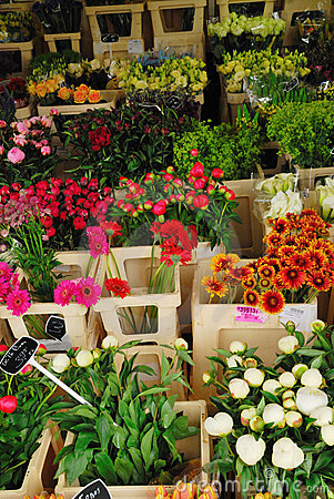 Flowers for sale in Amsterdam