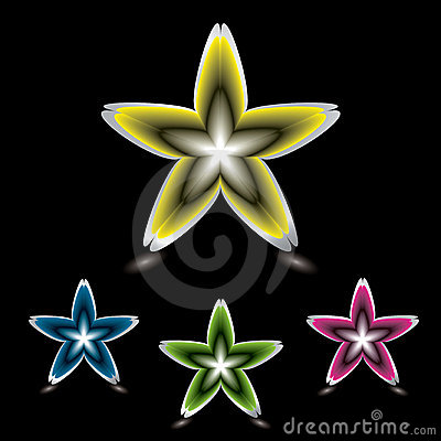 Star flower icon black