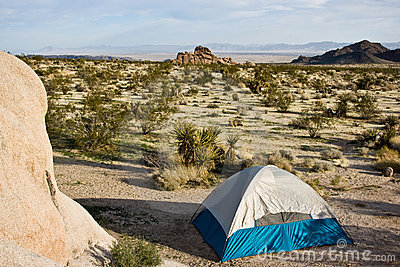 Campsite - Joshua Tree National Park