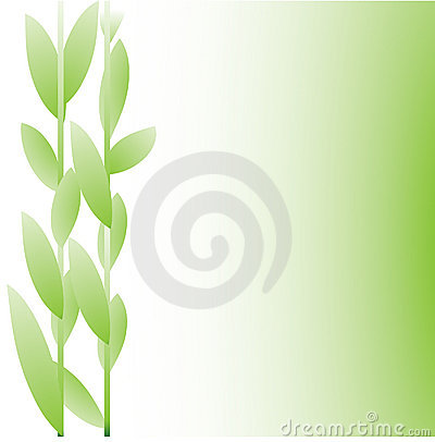 Green tone floral letter background