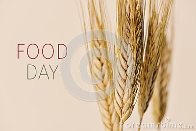 Text food day and wheat spikes