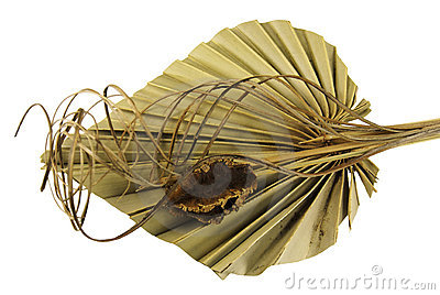 Decorative dried palm leaf