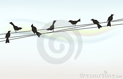 Abstraxt background with birds