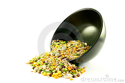 Soup Pulses Spilling from a Bowl