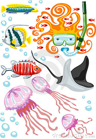 Vector illustration of snorkeling woman and fishes
