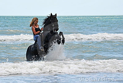 Rearing horse in the sea