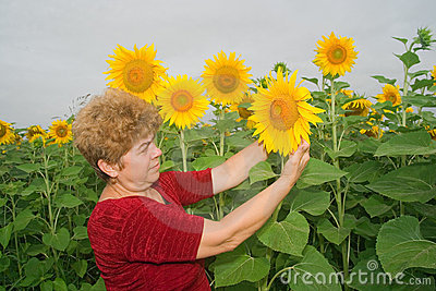 Woman on a sunflower field
