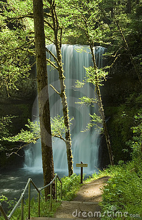 Silver Falls State Park, Lower South Falls