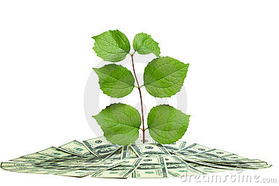 Plant in pile of money