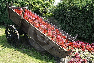 Chariot with flowers