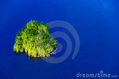 Small picturesque island with a grass