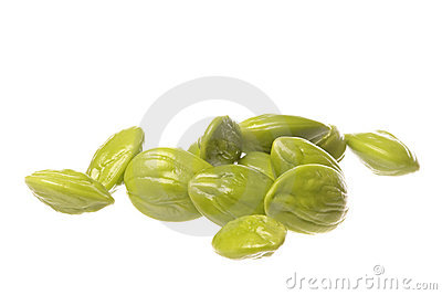 Bitter Beans Isolated