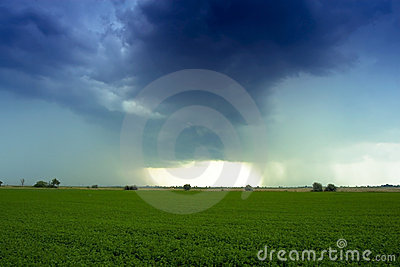 Thunder in the field