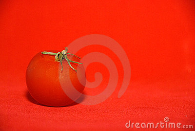 Tomato on Red