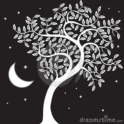 Night Tree