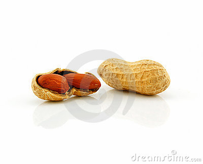 Ripe Dried Peanut Isolated on White