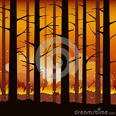 Burning forest fire natural disaster