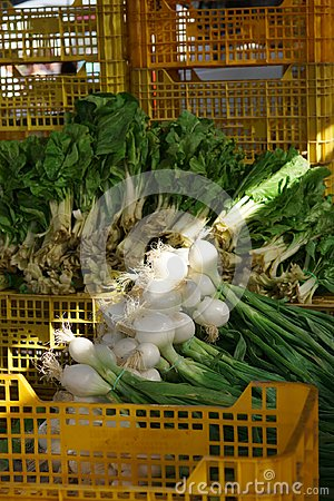Green onions lie on yellow plastic boxes in the market, the sun ray illuminates white bulbs with roots