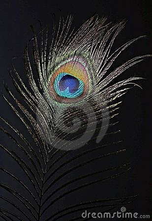 The peacock eye 1