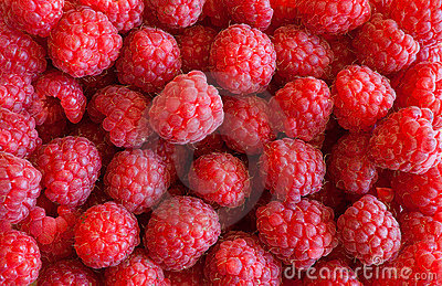 Raspberries background