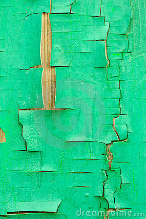 Fence with an old paint green color