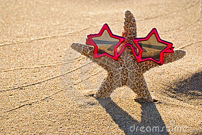 Starfish Star