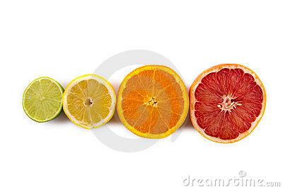 Citrus Fruits in a row