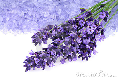 Lavender and salt