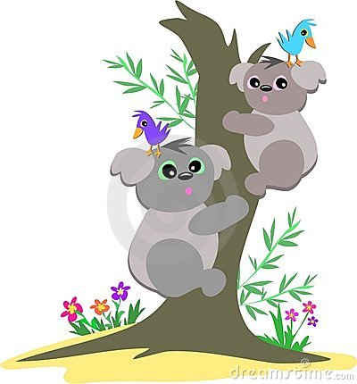 Koala Bears Up a Tree