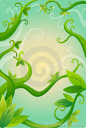 Vines and leaves