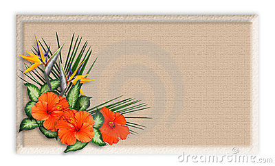 Floral border Tropical Background