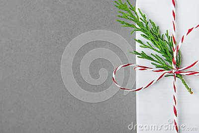 Elegant White Gift Box Tied with Red Ribbon Green Juniper Twig. Christmas New Years Presents Shopping Sale. Gray Background