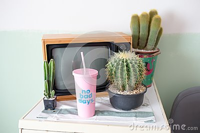 Cactus, television and Plastic glass