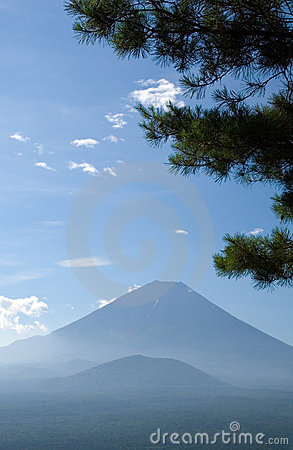 Mount Fuji with pine tree