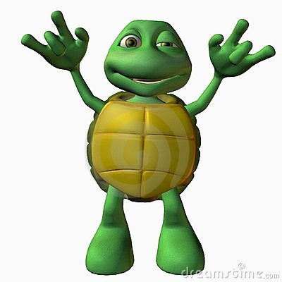 Turtle Boy -Rock On