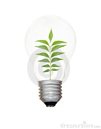 Incandescent light bulb with a tree
